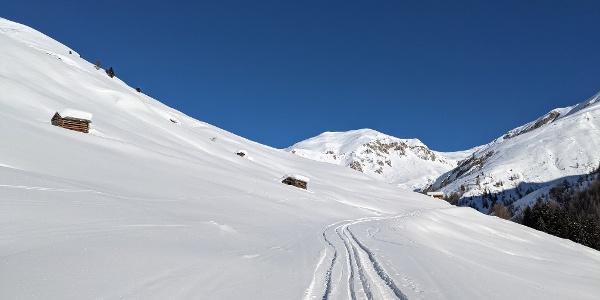 Fahrweg zur Fließer Alpe