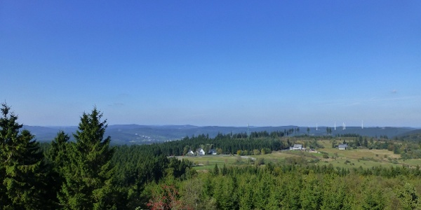 Blick vom Gillerturm über die Ginsberger Heide