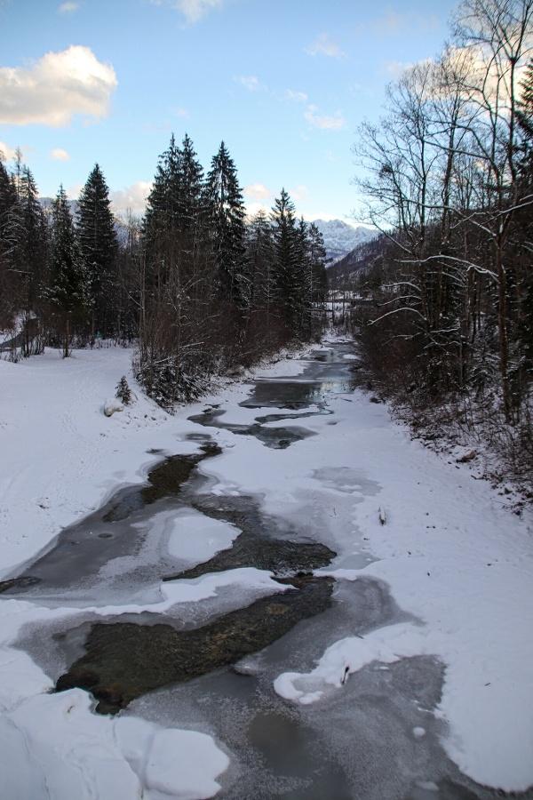 Auerbach Winter