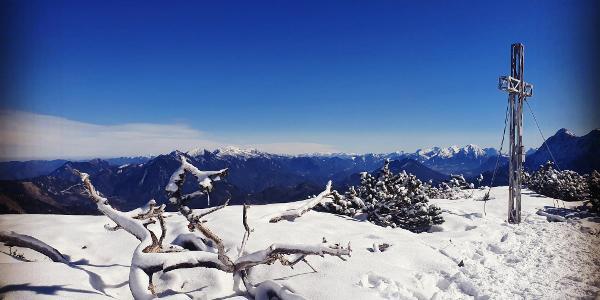 Roßschopf 1647 m