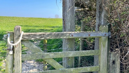 Gate close to Thorncombe Beacon