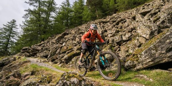 Windach Trail