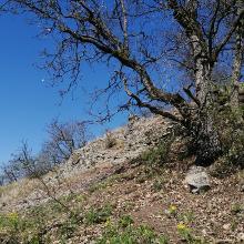 A Zuvár romjai 2021. április 10., szombat