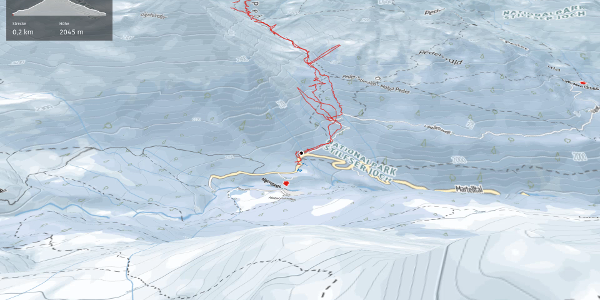 Skitour im Vinschgau: Skitour Schildspitze