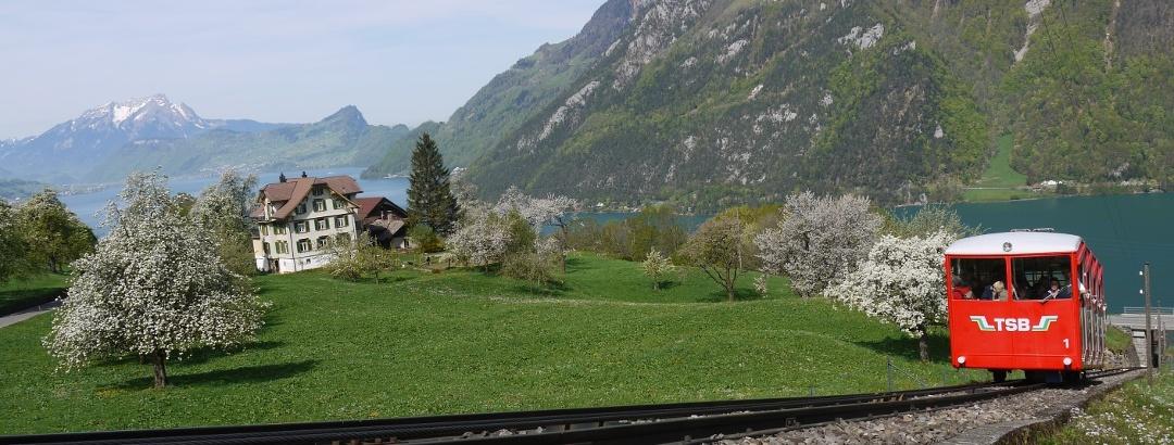 Treib-Seelisberg Bahn