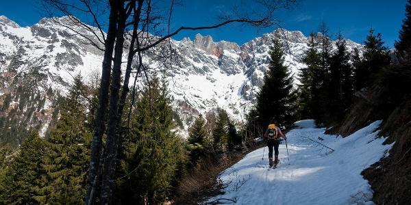 genug Schnee auf dem Forstweg