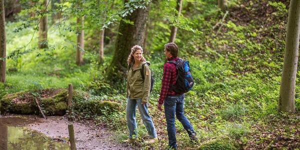 Wandern in Bad Kissingen