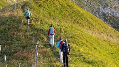 Wanderer unterwegs auf Alpwiesen-Weg