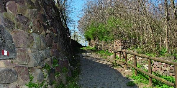 In cammino verso Garzano