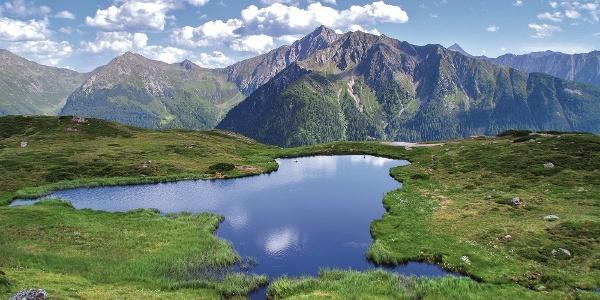 Rundumsicht am Hochwart mit der imposanten Texelgruppe, den vergletscherten Stubaier Alpen, bis weit in das südliche Meranerland.