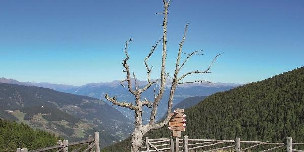 Spitzen Ultental