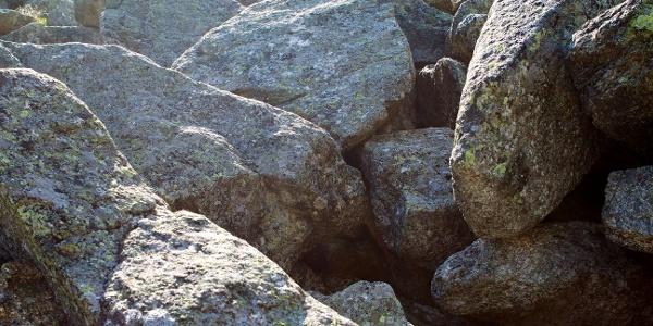 In der Nähe des Lago di Cavedine ist zwischen den Blöcken eines Felssturzes ein Trockenbiotopentstanden,das einer Mondlandschaftähnelt:die Marocche.