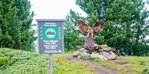 Mit etwas Glück kann man in den Felswänden im Naturpark imposante Tiere, wie etwa den Steinadler, erblicken. /