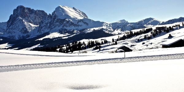Die Loipen auf der Seiser Alm garantieren ein großartiges Panorama.