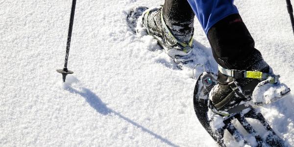 Kurze Schneeschuhwanderung am Jochgrimm zur Auerleger Alm.