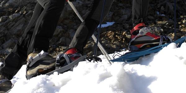 Mit den Schneeschuhen unschwierig hinauf zum Sambock.