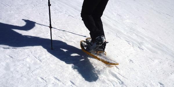Mit den Schneeschuhen gemütlich nach St. Moritz wandern.
