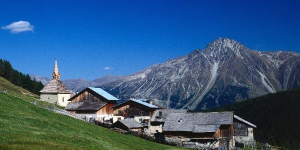 Rojen im Vinschgauer Oberland