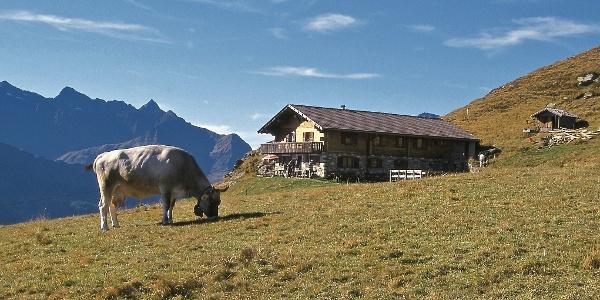 Die besonders aussichtsreich gelegene Hochalm oberhalb der Egger-Grub-Alm