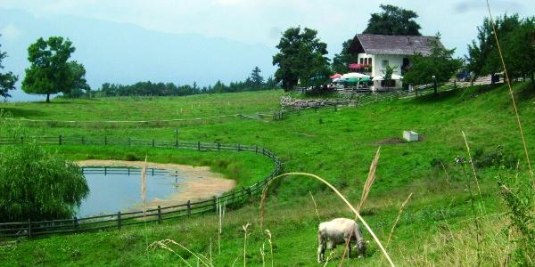 Ausflug durch den Naturpark Trudner Horn