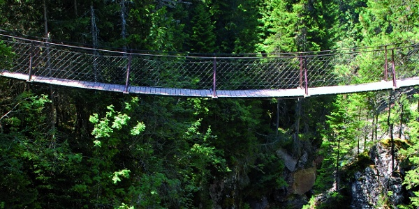 Hanging bridge over the canyon created by the river Travignolo