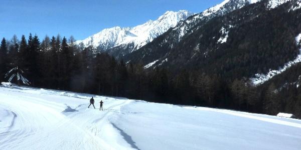 Langlaufen in Antholz- da ist für Klein und Groß was dabei.