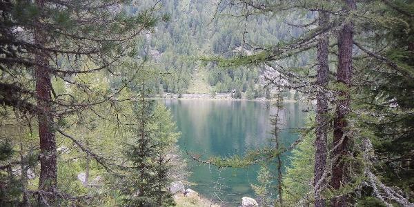 Am Weißbrunnsee