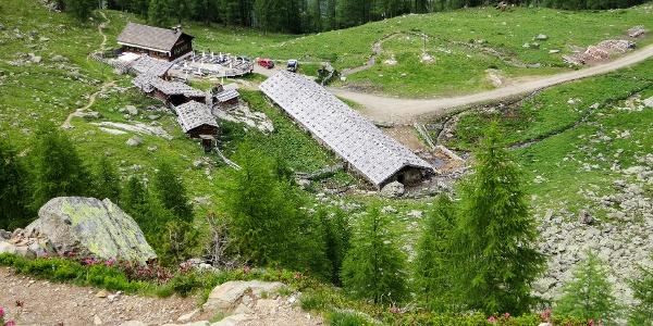 Die Wanderung zum Nagelstein im Ultental führt an der lauschigen Fiechtalm vorbei.
