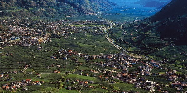 Blick über Algund bei Meran und rechts den Marlingerberg