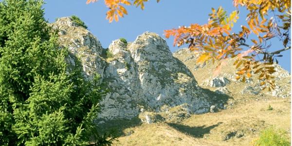 Herbstfarben am Monte Cadria. Der Bergstock war im Ersten Weltkrieg stark befestigt
