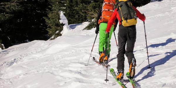 Durch die große Lawinenschneise hinauf zur Rosimhütte und hoch auf die Schluderspitze im Martelltal.