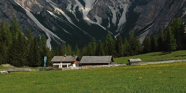 Die Grünwaldalm ist ein beliebtes Wanderziel in den Pragser Bergen.