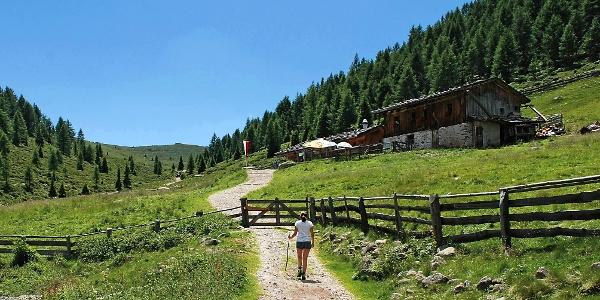 Zu Beginn der Wanderung geht es zur Auener Alm im Sarntal.