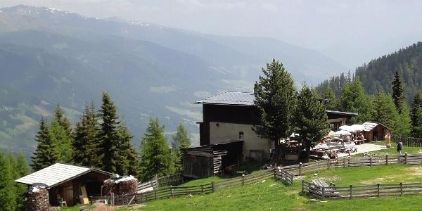 Auf der Osttiroler Leckfeldalm.