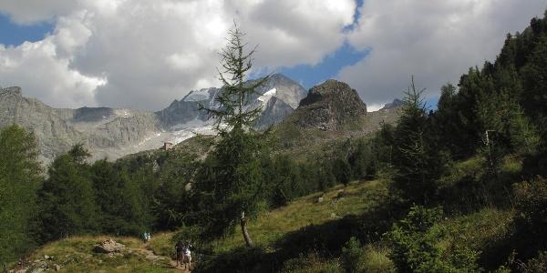 Aufstieg von Rein zur Kasseler Hütte