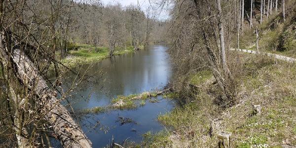 Die Gaißa - Landschaftsschutzgebiet, dennoch soll die Nordtangente hier queren!