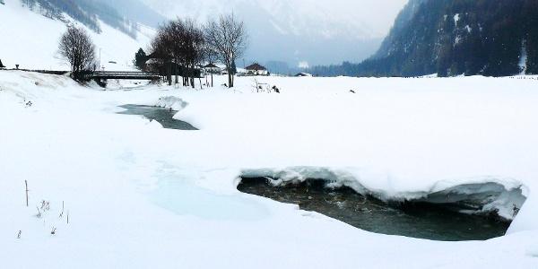 Die Langlaufloipe Pfitschtal führt rund 20 km den Talboden entlang.