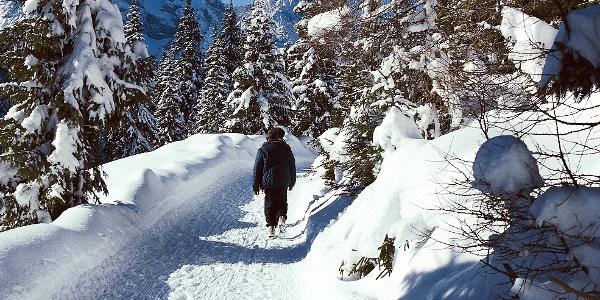 Durch die verschneite Winterlandschaft in Weißlahnbad bei Tiers.