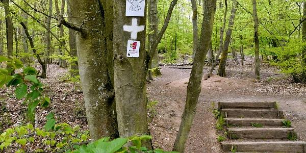 Am Wanderparkplatz und Portal am Silbersee startet das Abenteuer!