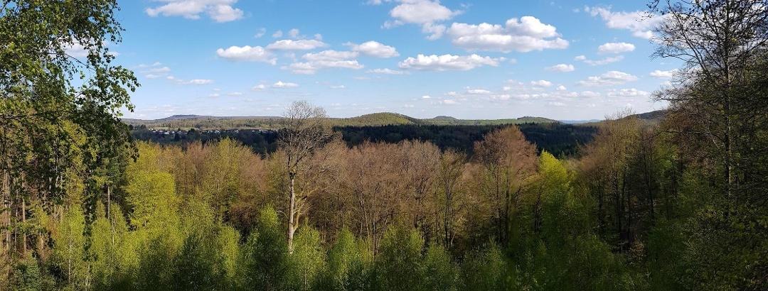 Panoramablick vom Hohen Fels