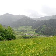 Blick vom Gummeneck in Richtung Simonswald