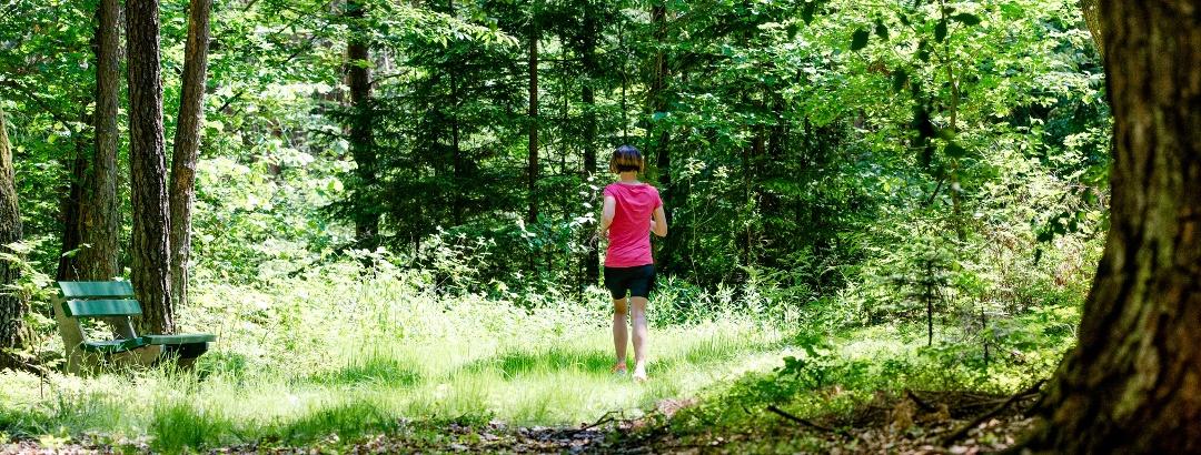 Laufen durch die Wälder Bad Waltersdorfs