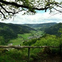 Blick ins Kirnbachtal