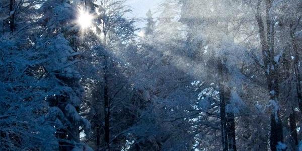 Die ersten Sonnenstrahlen erreichen die nordseitige Skipiste.