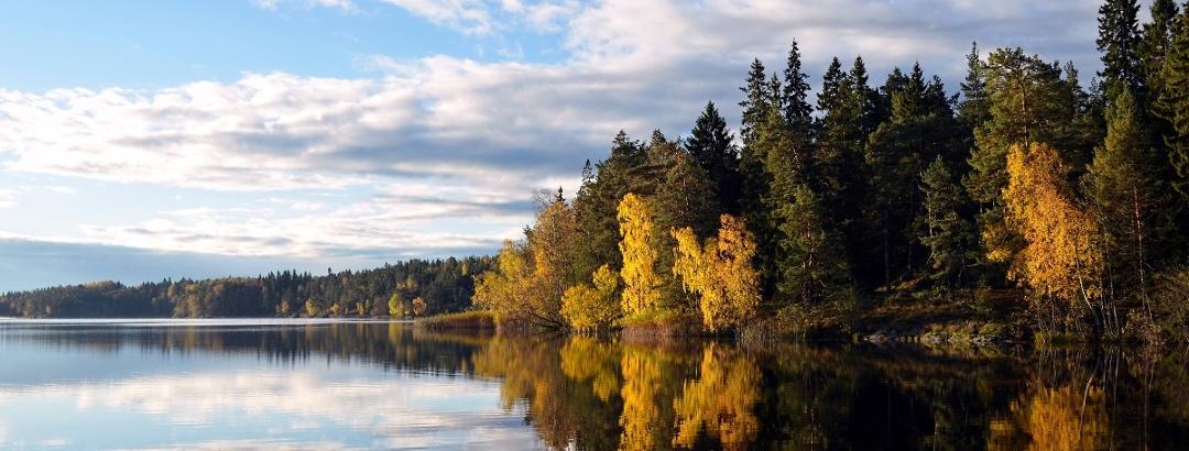 Der Flaten in Järnforsen   Schweden