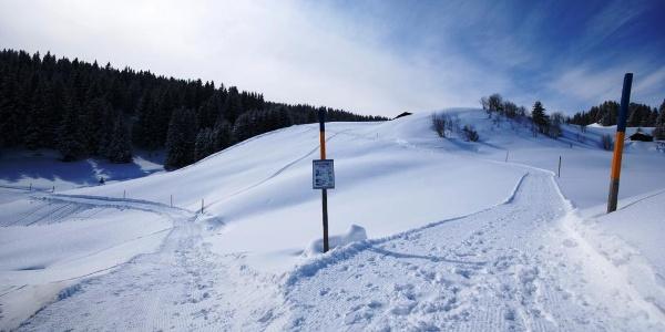 Winterwanderweg Furna, Hof
