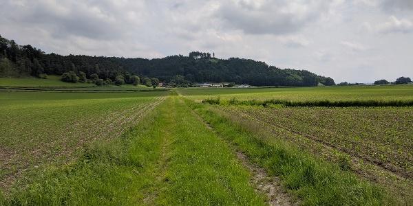 Der Feldweg östlich von Prienbach