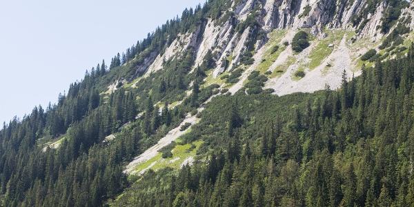 Halserspitz und bayerische Wildalm