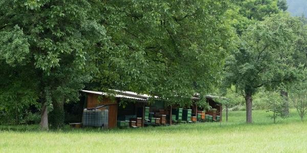 Bienenstock entlang der B3