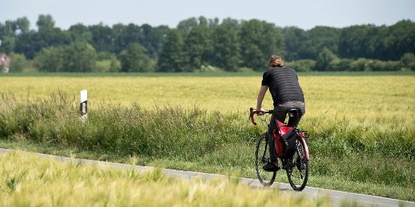 Fahrradfahrer am Feld